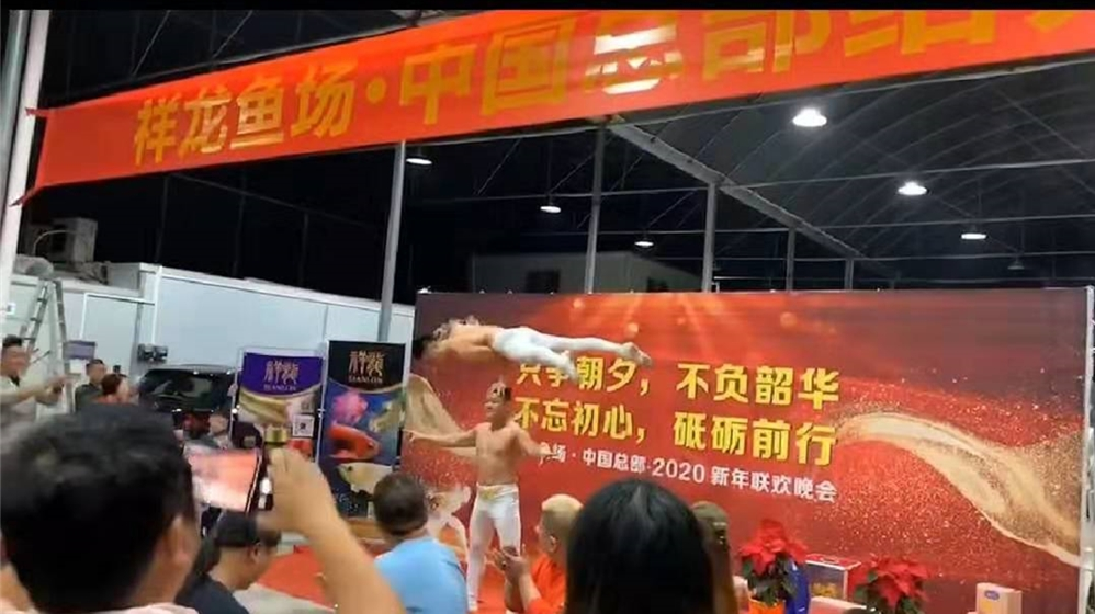 The 2020 New Year Party of Sianlon ASIAN arowana fish farm was held in Guangzhou headquarters, China Sianlon arowana fish farm ASIAN AROWANA,AROWANA,STINGRAY The3sheet